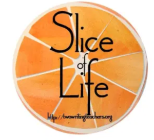 I am hoping to blog every day of March for Slice of Life by Two Writing Teachers